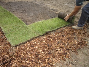 Laying A New Lawn